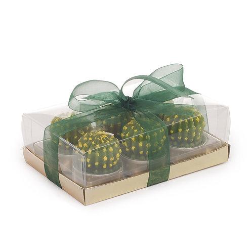 Vela Decorativa Cactus
