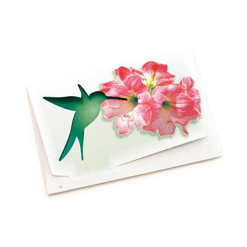 Cartão Horizontal Beija-Flor