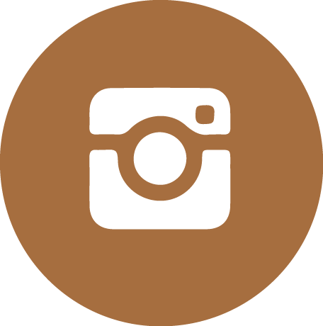 icone_instagram