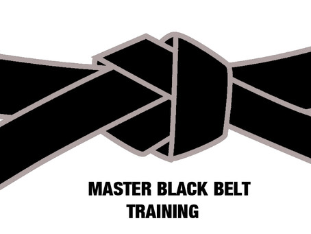 ISO18404:2015 What is a Six Sigma Master Black Belt