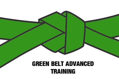 Six Sigma Advanced Green Belt 10-Day