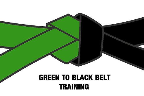 Six Sigma Green to Black Belt 10-Day