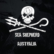 SS Australia.jpg