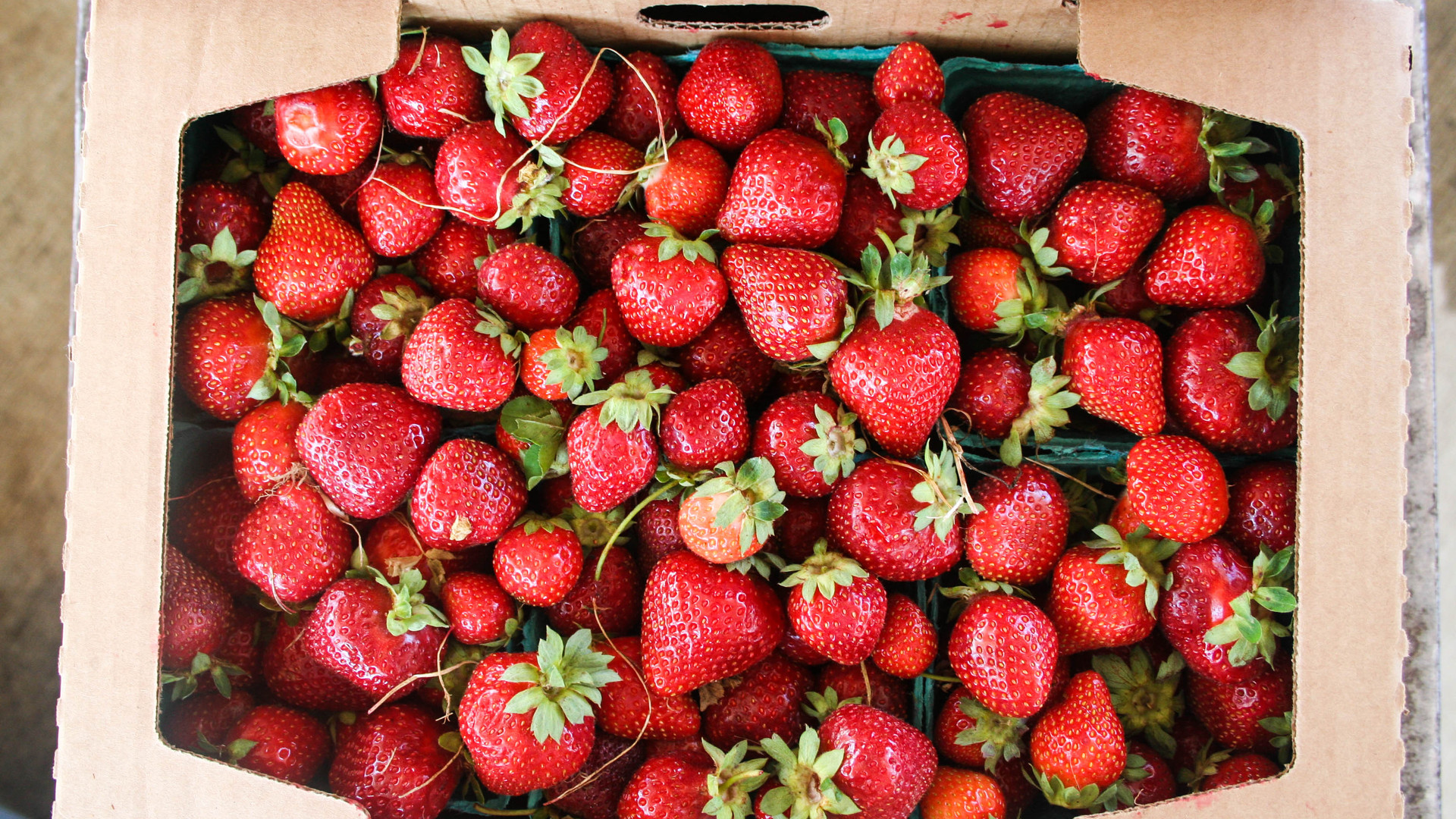 Our everbearing strawberry variety allows us to have products on the market from mid-May through late-September.