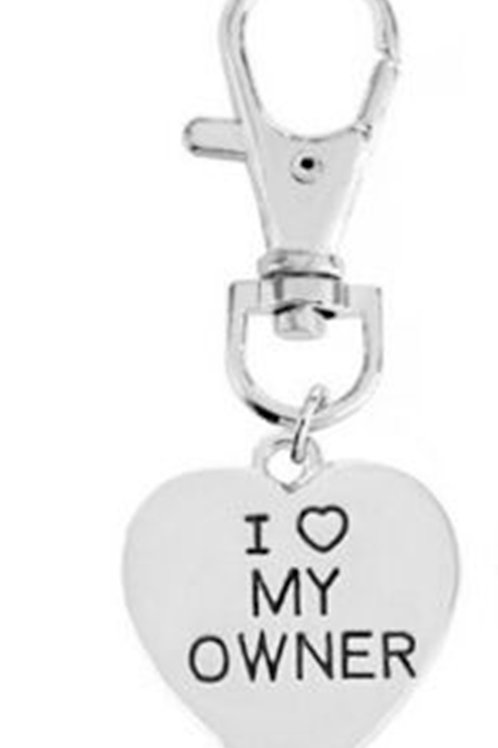 Silver Colour I Love My Owner Pet Keyring