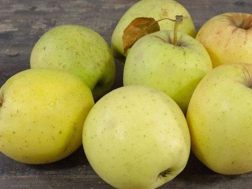Pommes Goldrush bio (au kg)