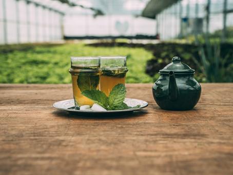 Thé à la menthe fraîche