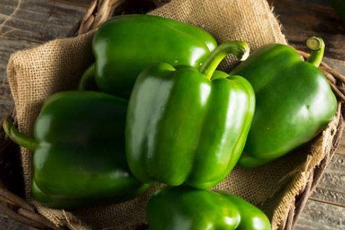 Poivron vert bio - 1kg