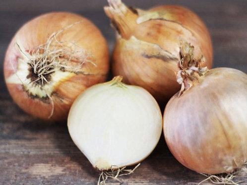 Oignons Jaunes bio - 1kg