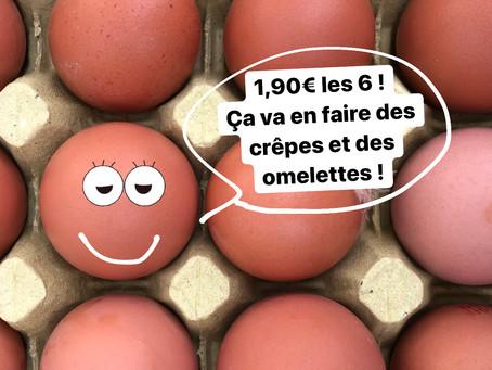 Du n'œuf dans la boutique !
