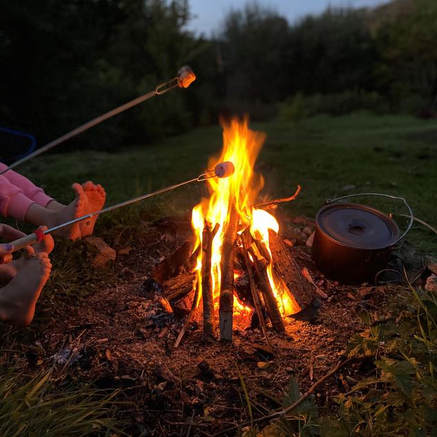 Toasting Marshmallows!