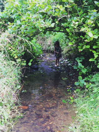 Exploring the stream