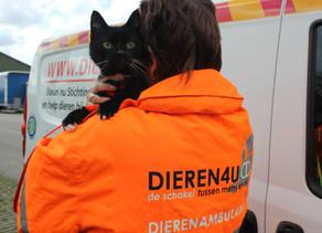 Los Terminales POC ayudan a la Asociación de Protección Animal en Holanda