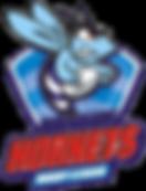 Hornets_RL_logo.png