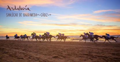 Pferderennen am Strand