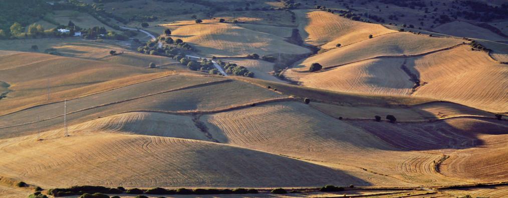 Das Land von Cadiz