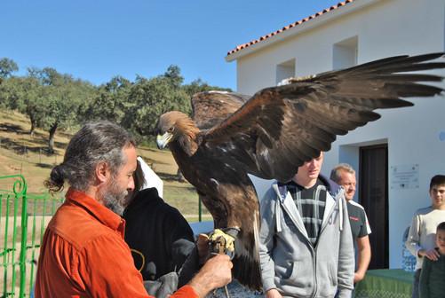 Montemediterraneo - die Wiederaussiedlung von Kaiseradlern ist nur eines von vielen Naturschutzprogrammen.