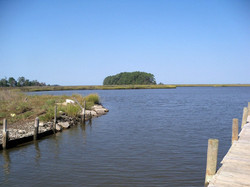Eastern Shore Nature