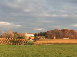 E_Cheich-winery