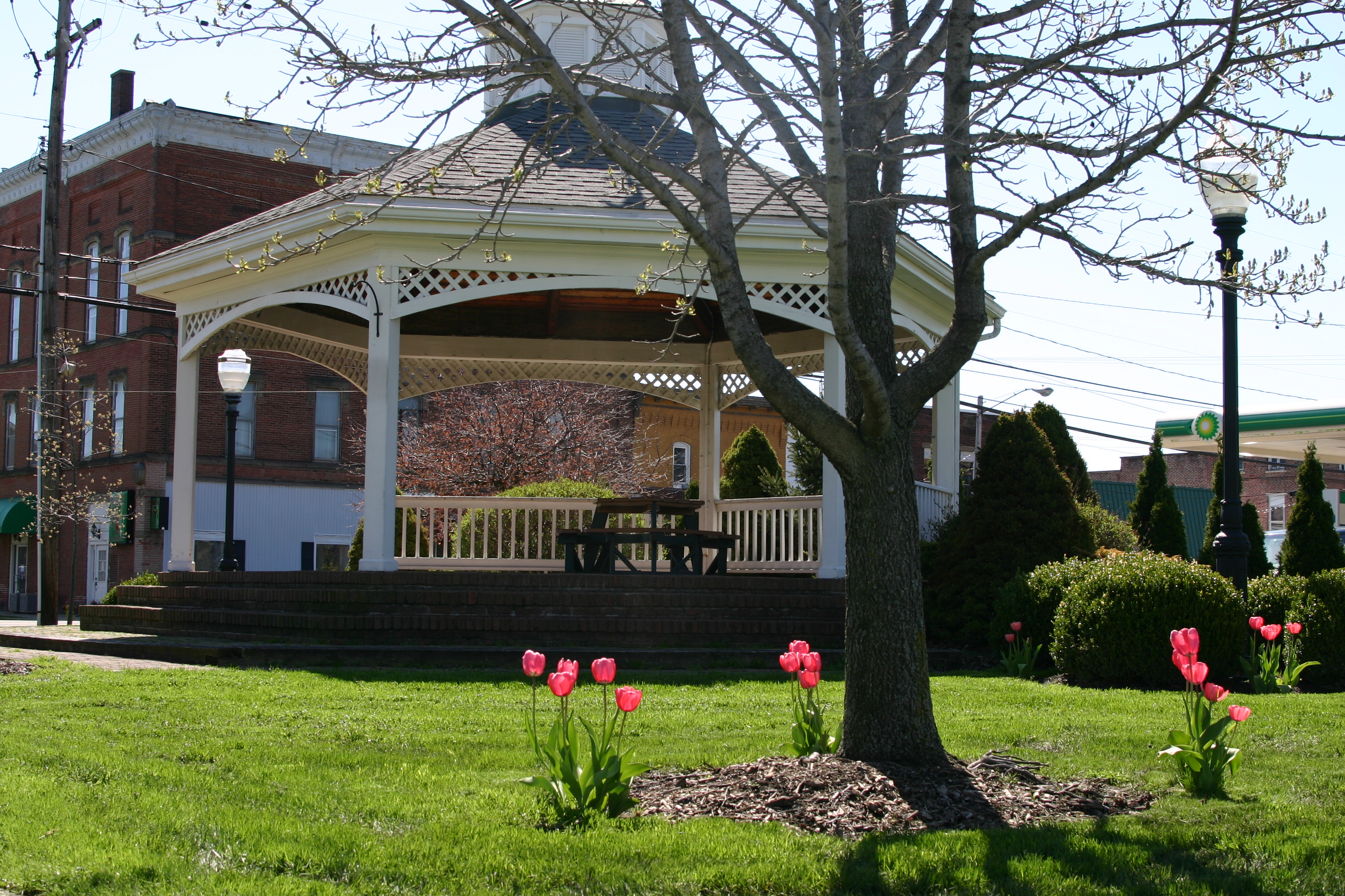 JeffersonTulips,Depot,Courthouse2011 (1)