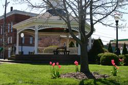 JeffersonTulips,Depot,Courthouse2011 (1)