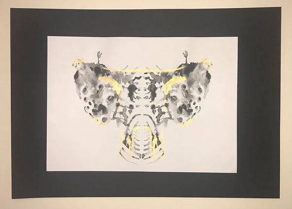 Sphenoid Bone - Tsara B.jpg