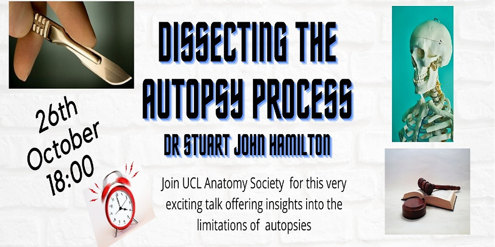 Dissecting the Autopsy Process