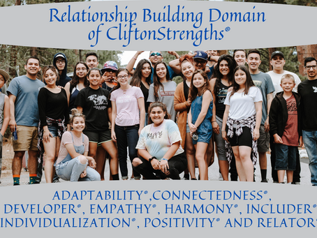Relationship Building Domain of CliftonStrengths®