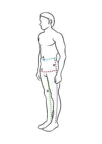 Trews measuring guide figure