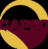 FV CAP60 logo.png