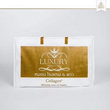Collagen coolmax pillow_๒๐๐๕๐๘_0001.jpg