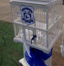 Dove release for a Cardiff City Fan