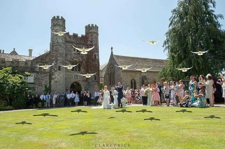 releasing a flock of white doves at a wedding