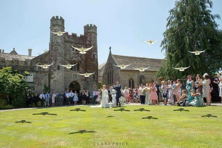 White Doves at A Wedding St Pierre Chepstow