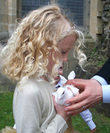 white doves for Wedding Wales