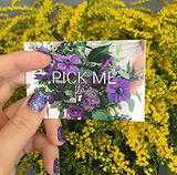 Pick Me.jpg
