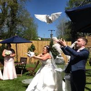 Release doves at DeCourceys Cardiff South Wales