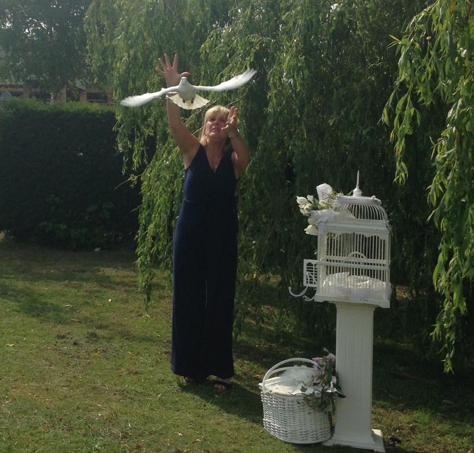white doves for funeral Bristol
