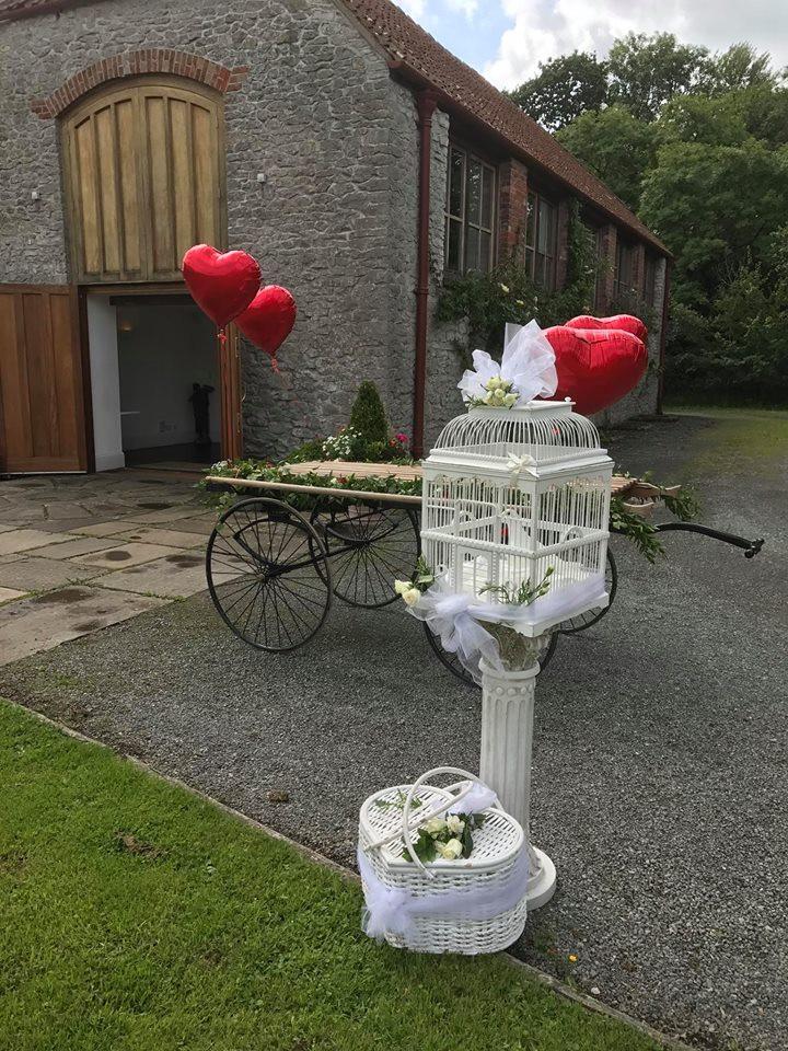 funeral dove release Bristol