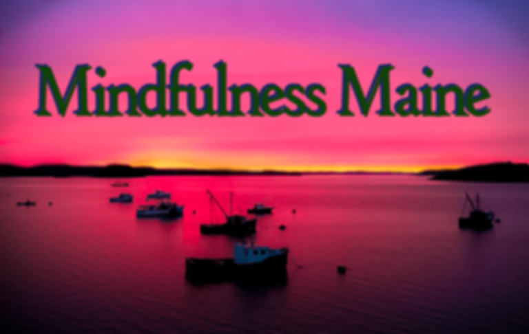 personalized, mindfulness maine, mindfulness, stress reduction, MBSR, meditation, yoga, wellness, Mary Eyerer, Maine, class, classes, teacher, sliding fee scale, research, resources