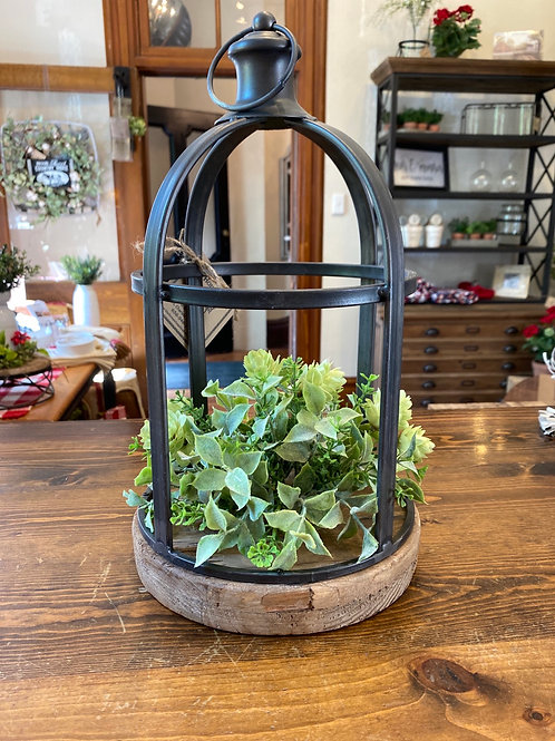 Small Plant Cage