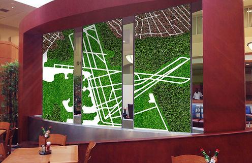 Green wall.jpg