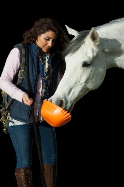 Lady & Horse with orange shark SKUP