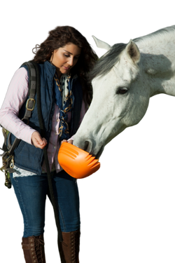 Lady & Horse with orange shark SKUP