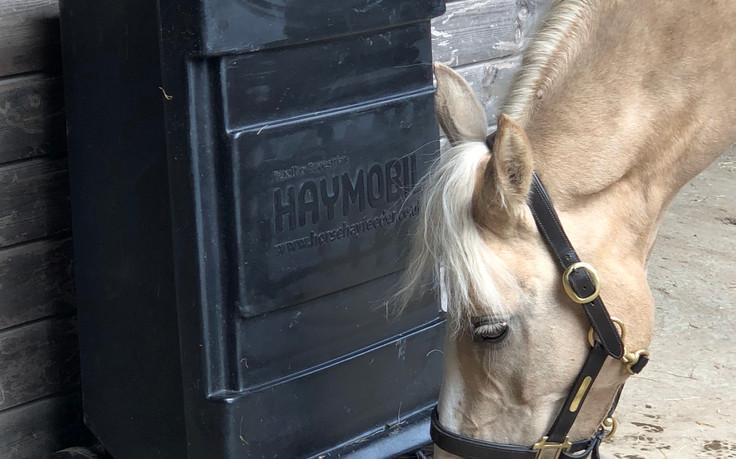Haymobil with horse.jpg