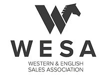 WESA-logo-full-rectangle.jpg