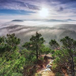 Wasgau/Pfälzer Wald