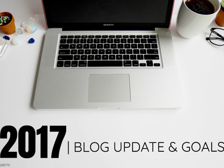 2017| BLOG UPDATE & GOALS