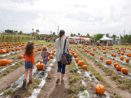LOCAL FALL EVENTS | MIAMI
