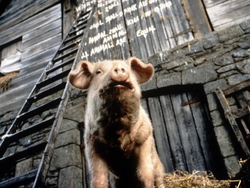 """Từ Animal Farm Đến Harry Potter: Những Trường Hợp Bị Từ Chối Xuất Bản """"Kinh Điển"""" Nhất Lịch Sử"""
